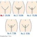 "Surprisingly fact, this is men's favorite ""Form of the pubic hair of the woman""."